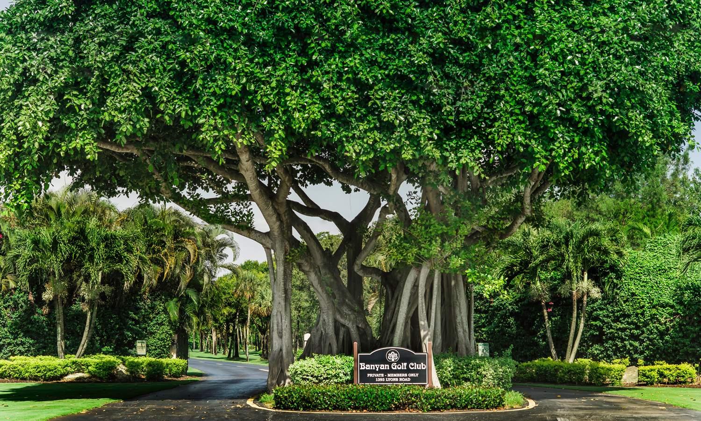 Banyan Golf Club - West Palm Beach, FL - Home